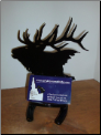 Bull Elk business card holder